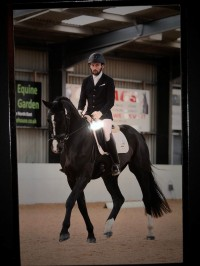 Flat Work Clinic with Andrew Wright
